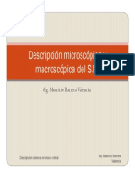 Descripcion Microscopica y Macroscopica Del Snc