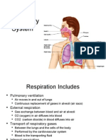 Lecture 21 - Respiratory System