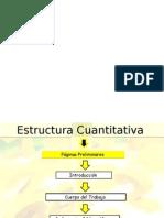 Estructura Proyectos Cuantitativos y Cualitativos I, II, III
