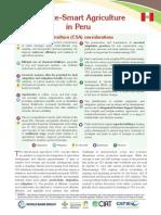CSA-in-Peru.pdf