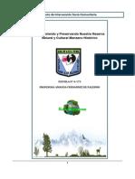 Proyecto_Manzano_historico.pdf