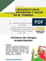 RiesgosBiologicos 2012-04-24