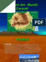 Regiuni Din Muntii Carpati