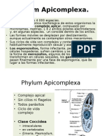 apicomplexaiparcial-121011183543-phpapp01