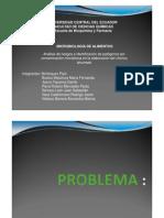 Presentación Proyecto en pdf