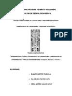 UNIVERSIDAD NACIONAL FEDERICO VILLARREAL.docx