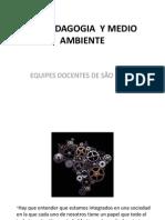 DIMENSION AMBIENTAL EDO-BRASIL.pdf