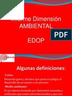 DIMENSION AMBIENTAL PERU.pdf