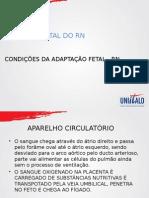 CONDIÇÕES DE NASCIMENTO.pptx