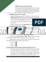 Copiar y Pegar Texto