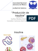 Intro Insulina