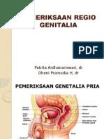 Pemeriksaan Regio Genitalia