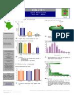 Censo General 2005 - Pasto
