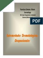 DERMATOSIS OCUPACIONAL UNMSM.pdf