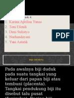 ppt-biji.pptx