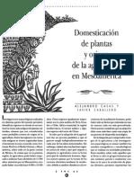 Domesticacion de Plantas y Origen de La Agricultura en Mesoamerica