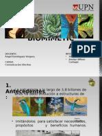 La Biomimetica Exposicion (1)