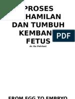 Proses Kehamilan Dan Tumbuh Kembang Fetus