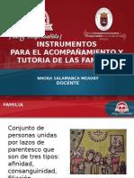 instrumentosfamilia.ppt