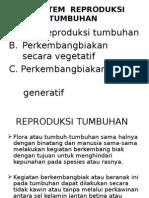 Sistem Reproduksi Tumbuhan 2013
