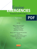 James A.Orsini - Equine Emergensies