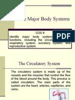 the major body systems - fifth grade