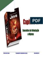 li-rui-pcj-cap11.pdf