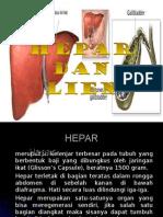 hepar.ppt