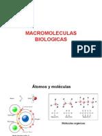 Moleculas y Macromoleculas