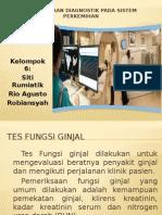 Pemeriksaan Diagnostik Pada Sistem Perkemihan