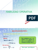Habilidad Operativa_S45