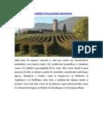 Articulos Periodisticos de Vinos