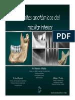 Limite Anatomicos del Maxilar Inferior Rx