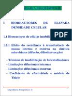 Slides EBII Modulo I (RO)