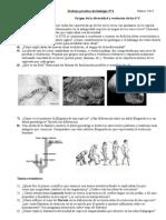 TP de evolución 2°B 2013 doc.doc