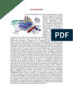 PROYECTO DE INVESTIGACIÓN GRUPO ATAL
