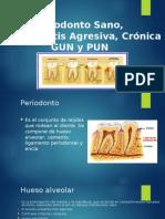 Presentacion Periodonto Clasificaciones