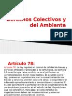 Derechos Colectivos y del Ambiente.pptx