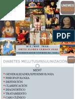 Dm Insulina