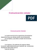 comunicacioncelular