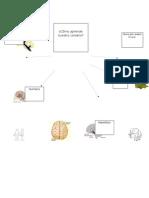 Como aprende nuestro cerebro?