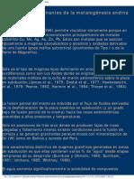 Factores determinantes de la metalogénesis andina.pdf