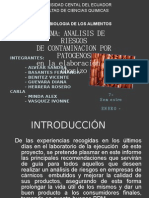 Proyecto Chorizo Cocinado