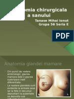 Anatomia Chirurgicala a Sanului