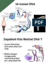 Isolasi DNA