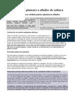 Tehnologia de plantare a afinilor de cultura.doc