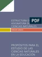 3estructura de La Asignatura de Ciencias Naturales