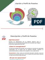 descripcion y perfil de puestoss.pdf