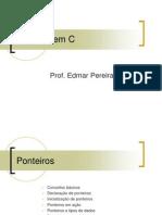 532954-LP-Ponteiros.pdf