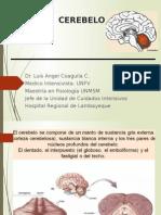 Cerebelo, Sistema Vestibular y Somatosensorial